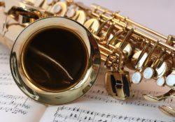 hudební franšíza
