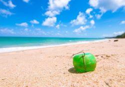 Finanční tipy nejen pro letní dovolenou