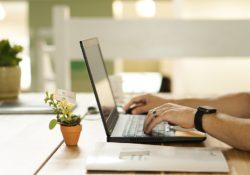 Vyplňte svou kancelář květinami, které prospějí všemu zdraví