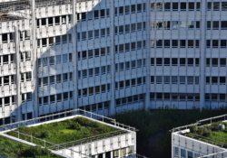 Jídlo pěstované na střechách budov jako budoucí byznys?